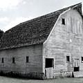 White Barn by Julie Hamilton
