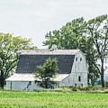 White Barn by Pamela Williams