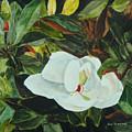 White Beauty by Jean Blackmer