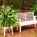 White Bench Sitting In A Beautiful Garden 2 by Jeelan Clark
