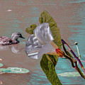White Bindweed And Mandarin Duck Mix #g5 by Leif Sohlman