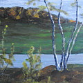 White Birch In The Landscape by Michael and Mary ODonnell