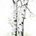 White Birch by Mary Tuomi