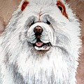 White Chow Chow by Christopher Shellhammer