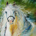 White Cloud The Andalusian Stallion by Marcia Baldwin