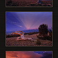 White Clouds Triptych by Leland D Howard