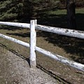 6005 - White Country Fence by Sheryl L Sutter