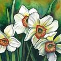 White Daffodils by Linda Nielsen