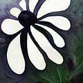 White Daisy by Gina De Gorna