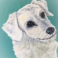 White Dog by Charleena Treanor