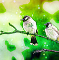 White-eared Bulbul - Watercolor by Ericamaxine Price