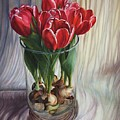 White-edged Red Tulips by Rosanne Wolfe