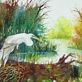 White Egret Swamp by James Heroux