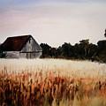 White For Harvest by Rachel Christine Nowicki