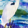 White Heron by Ruth Bevan