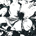 White Hibiscus- Art By Linda Woods by Linda Woods