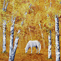 White Horse In Golden Woods by Laura Iverson