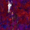 White Horse White Horse  by PixBreak Art