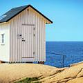 White Hut by James Billings