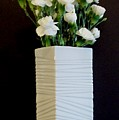 White In White by Marsha Heiken