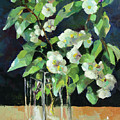 White Jasmine In A Ikea Bowl by Vali Irina Ciobanu