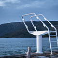 White Ladder Of A Diving Board At The Beach In Cres by Stefan Rotter