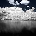 White Land  by Galeria Trompiz