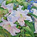 White Lily. 2007 by Natalia Piacheva
