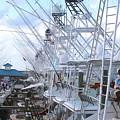 White Marlin Open Docks by Carey Chen