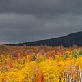White Mountain Hillside by Steven Natanson
