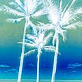 White Palms by Debra and Dave Vanderlaan