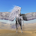 White Pegasus In Desert by Corey Ford
