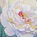 White Peony  by Jo  Mackenzie