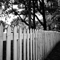 White Picket Fence- By Linda Woods by Linda Woods