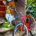 White Rabbit And Bike by Garry Gay
