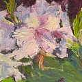 White Rhodedendrons by Maria Anderson