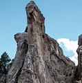 White Rock, Garden Of The Gods by Jennifer Mitchell