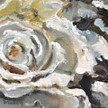 White Rose by Donna Tuten