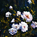 White Roses by Jimmie Trotter