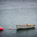 White Rowboat And Seagull by Robert Anastasi