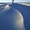 White Sands National Monument, Nm Usa by Dawn Kish