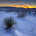 White Sands Sunset by Peter Tellone