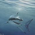 White Shark by Angel Ortiz