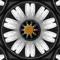 White Shimmering Flower by Pepita Selles