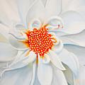 White Smile by Olga Smith