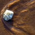 White Stone In Sand by Steve Somerville