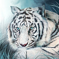 White Tiger - Spirit Of Sensuality by Carol Cavalaris