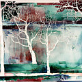 White Trees by Connie Williams