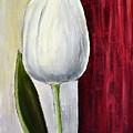 White Tulip by Dimitra Papageorgiou