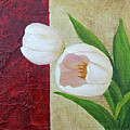 White Tulips by Phyllis Howard
